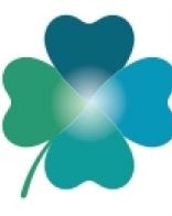 E-book - Nutrição para Pacientes com Doença Renal Crônica em Tratamento Conservador